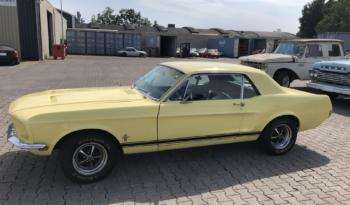 Ford Mustang Oldtimer Te Koop
